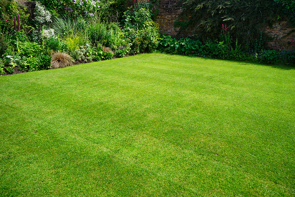 Landscaping Rebollo Landscaping Inc